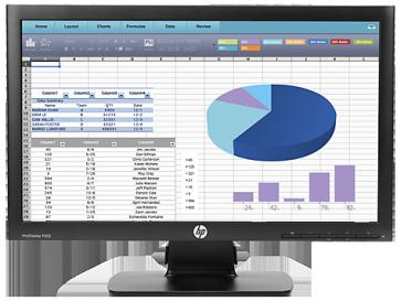 "Монитор HP ProDisplay P202 50,8 cm (20"") Monitor"